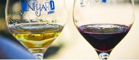 Carne e vinho: uma combinação campeã