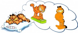 Emagrecer dormindo? Um sonho realizado?