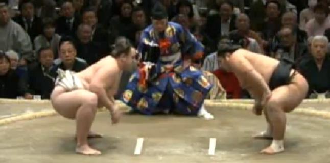 Juiz de sumô, uma da profissões mais perigosas do mundo!