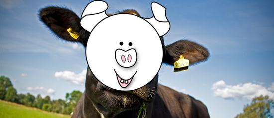 Argentinos são estranhos… carne de boi tem gosto de porco!