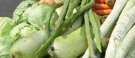 Vegetais congelados podem ser mais nutritivos
